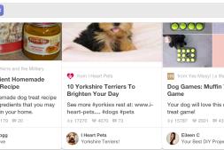 如何在Pinterest上按照Repin数量筛选Pins